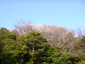 2013331_004
