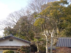 Kyoboku06